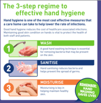 image links to an effective hand hygiene guide