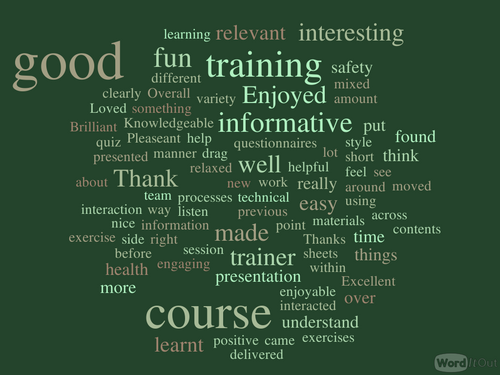 a word cloud generated from the training feedback shown above