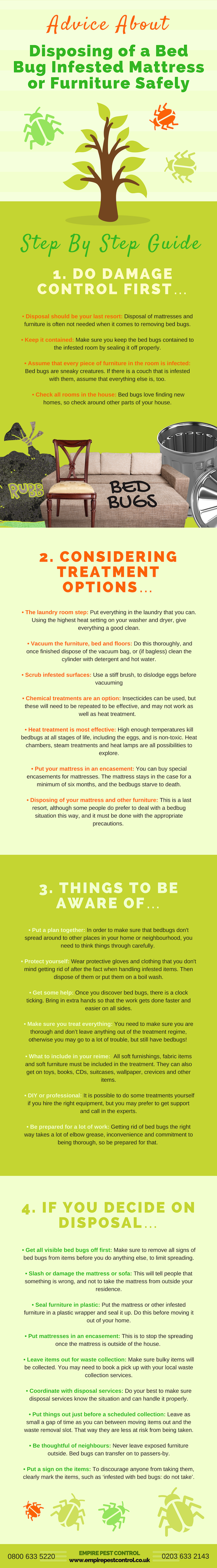 Bed bug treatment infographic